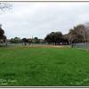 Walter Fuller Complex Dog Park 021409_00004