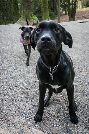 Wilbur! and Elsie