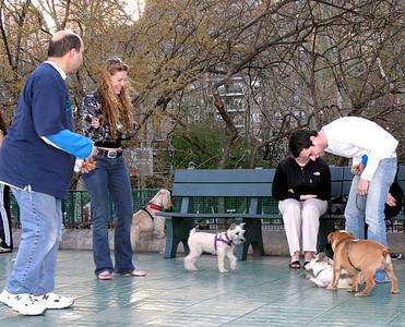 2005 - Carl Schurz Park Dog Run - Rick Edwards