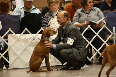 2009 VCA Nationals - Bred By Bitches, Veterans, Stud Dog