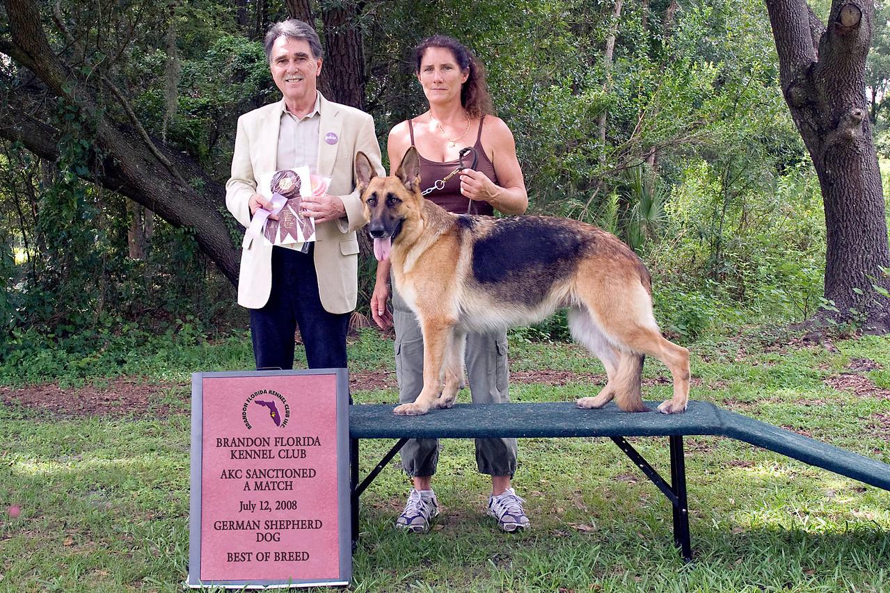 Alya Vom Angelbaum, a German Shepherd Dog, took Best of Breed under Judge Sam Steding.  She is owned by Michelle Delaney.