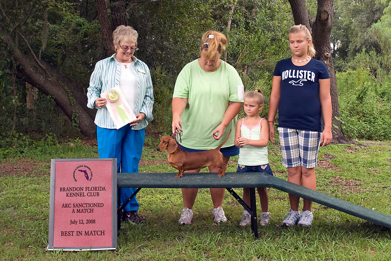 Stonerivers Day Time Diva MS, a Smooth Dachshund, is shown winning Best in Match at Brandon Florida Kennel Club's first AKC sanctioned A Match.  Lilly is owned and loved by Wendy Lovins & Savanna Miles.