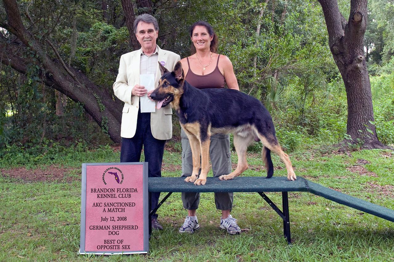 Acki Vom Shelzsmide, a German Shepherd Dog, took Best of Opposite Sex at the Brandon match.