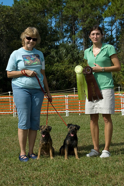 These two Border Terriers earned second & third place in Rally Novice.