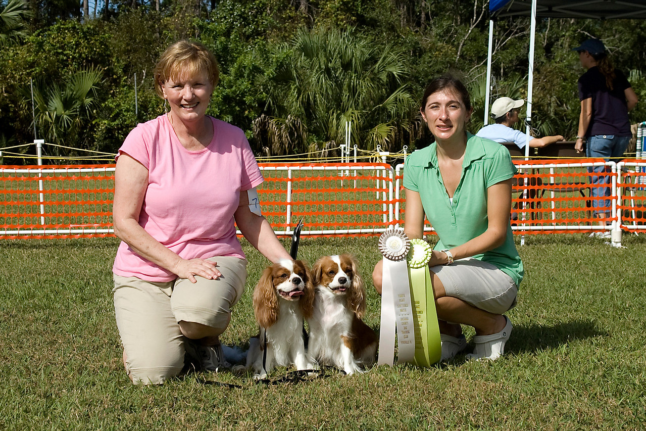 Cavalier King Charles Spaniels took third and fourth place in Rally Advanced.