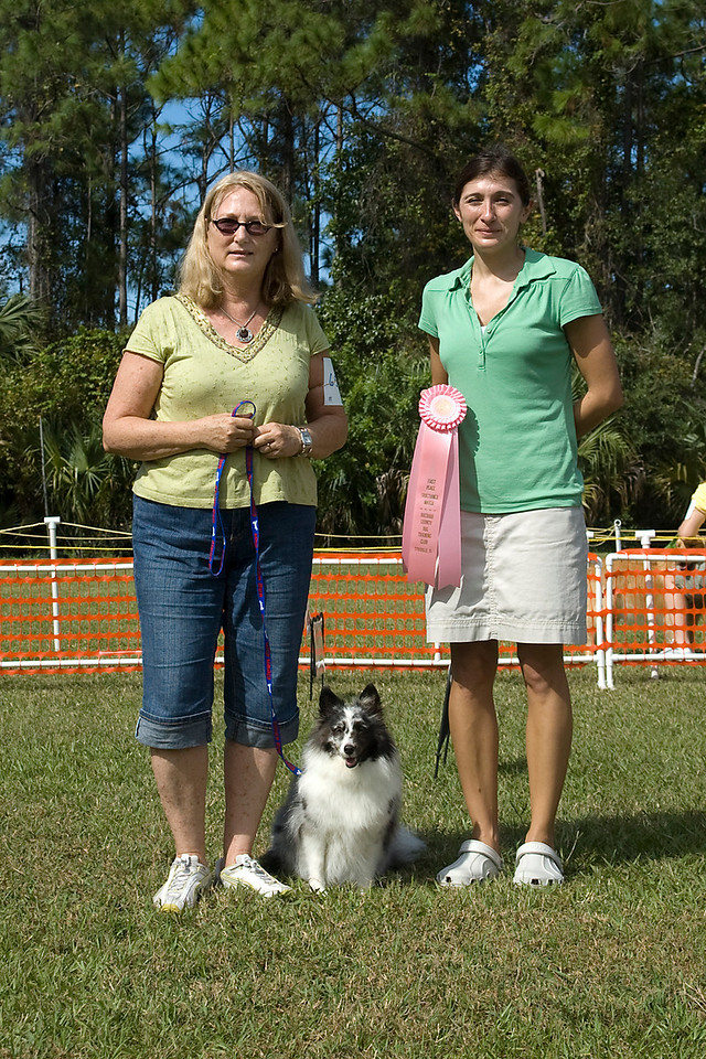 The Shetland Sheepdog earned first place in Rally Novice.