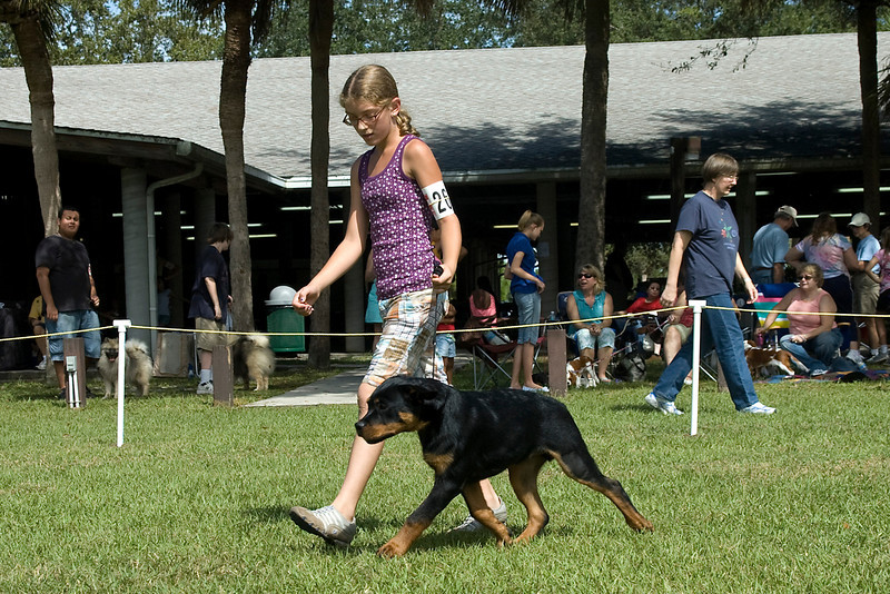 This young lady and her Rottweiler compete during the Junior Showmanship competition.