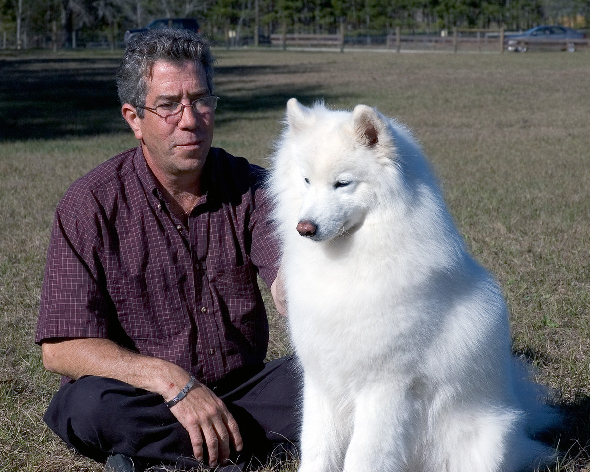 Gary Sheetz, agent, is shown with Ch Castle's Rasia Of White Gold, HT. - Gainesville show - Jan. 2008