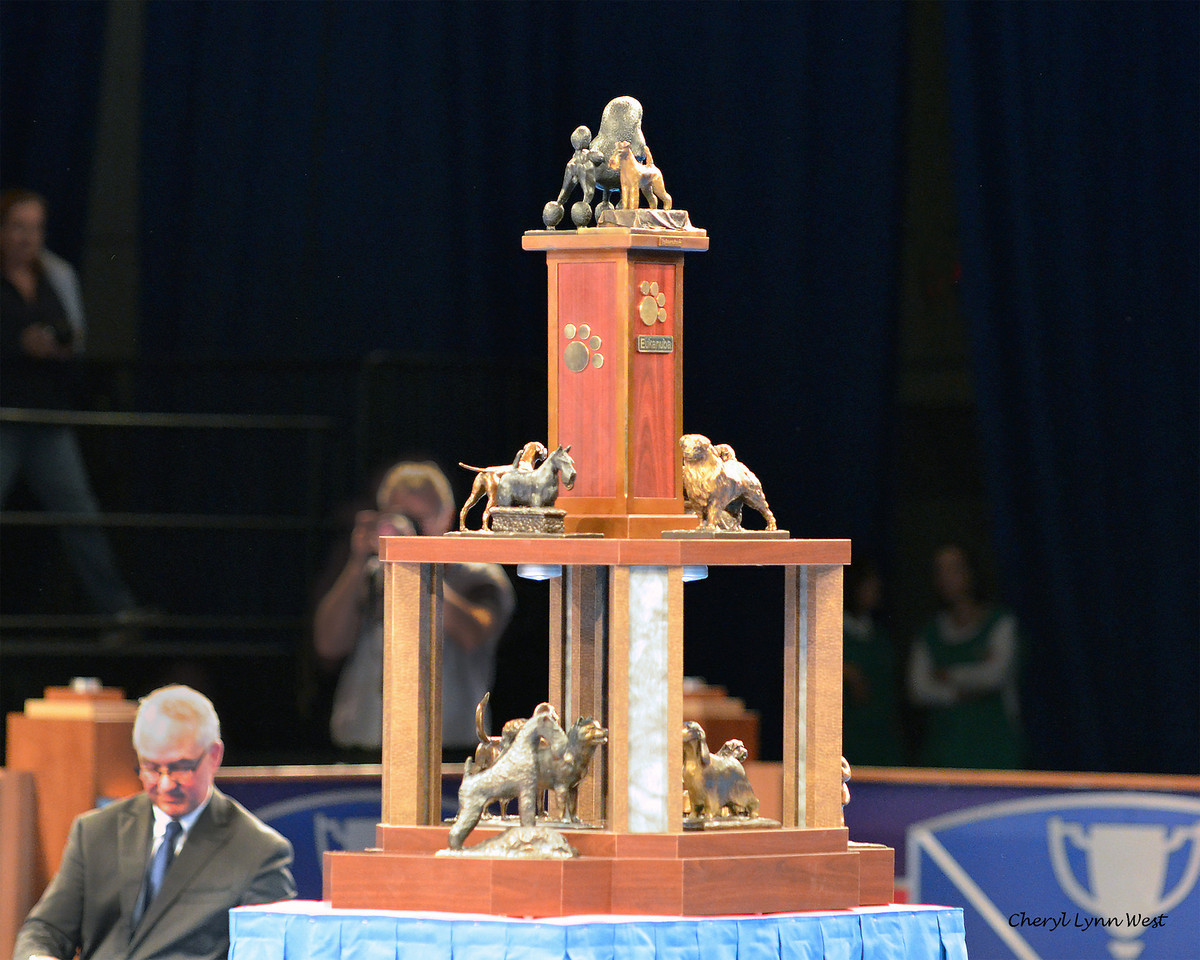 Best in Show trophy with all past winners