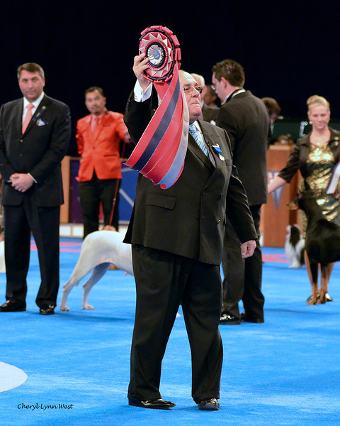 Eukanuba World Challenge - Judge Miguel Angel Martinez, of Buenes Aires, Argentina