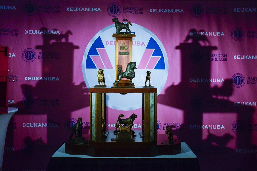 AKC Eukanuba Trophy with past winners