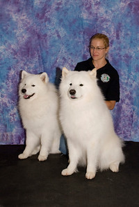 Stephanie Sagan proudly poses with her two boys, Koa (White Gold's Caught in the Act) and Kempas (White Gold's Prince of Belleair), both of whom competed in the Adult Male class.
