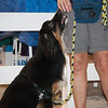 Tailwaggers Candids-10