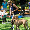 Treasure Coast Kennel Club-27