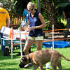 Treasure Coast Kennel Club-26