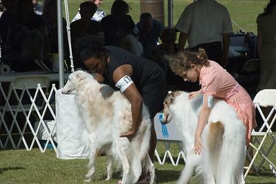 Boca Raton Dog Show-23