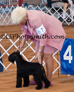 Ft Lauderdale Dog Show Edits-15