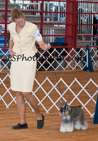 Ft Lauderdale Dog Show Edits-13