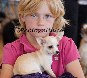 Ft Lauderdale Dog Show Edits-23