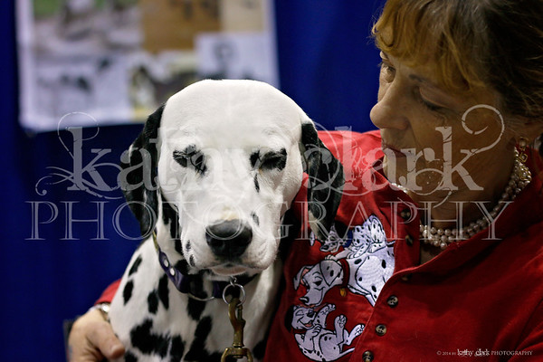 Eukanuba Saturday Meet the Breeds