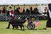 IMG_4506- Opening ceremony- BMDCA2008