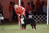 IMG_2188-De-Li's Focus On The Future-9-12mos dog
