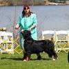BMDCA 2018 Dogs -1206
