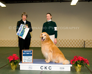 Winner's Photos Obedience - Sunday, November 30, 2008