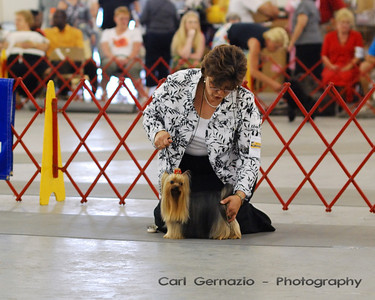 Virginia Kennel Club - Sunday, June 22, 2008