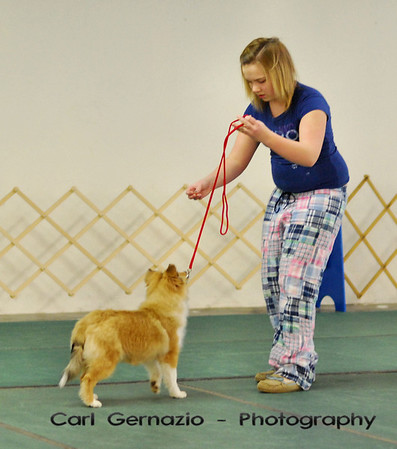 Catoctin Kennel Club Match