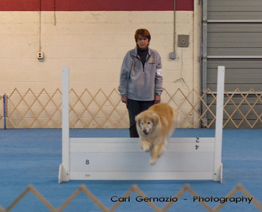 Sunday, Obedience Candid Photos