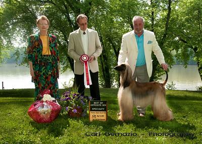 Potomac Afghan Hound Club Specialty Show