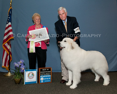 Great Pyrenees Club of America Nat. Spec 2010