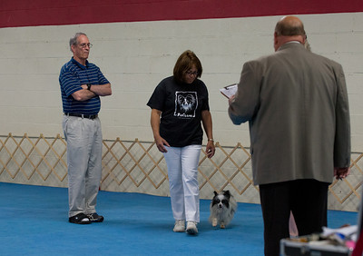 ODTC - Candid Photos - Sunday, May 25, 2014