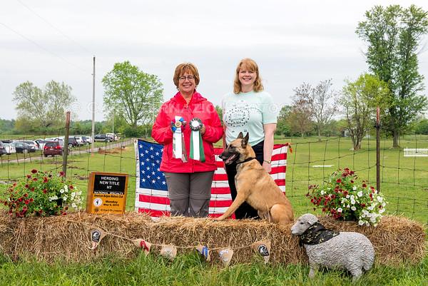 Herding - Winners Photos - Monday, May 9, 2016