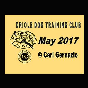 ODTC - OB/Rally Trials - May 2017