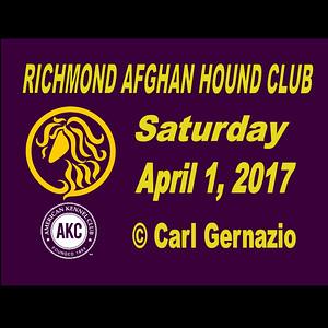 Richmond Afghan Hound Club - April 2017