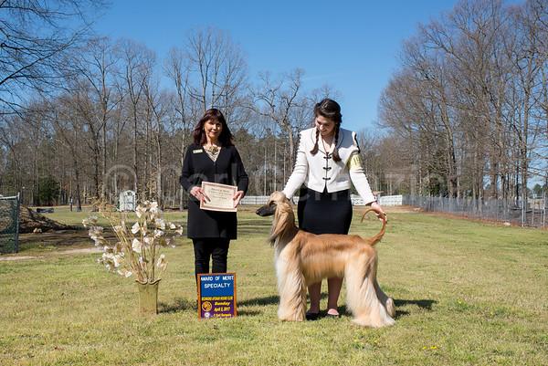 Winners Photos - Sunday, April 2, 2017