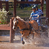 Charlotte Trentelman from Anthony, Florida navigates the water hazard with her Halflinger pony.