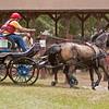 Morgan Pair driven by Alan Aulson of Bronson, Florida.