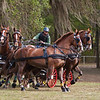 Gavin Robson of Australia drives Four-In-Hand Dutch Harness horses