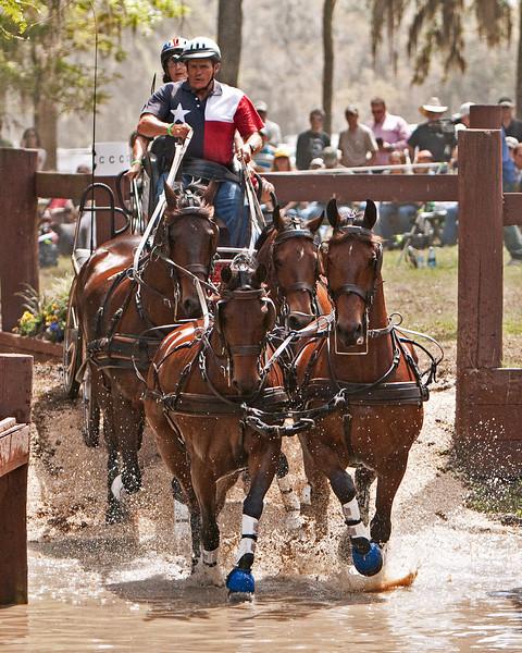 Friesian/Quarter Horse cross Four-In-Hand driven by Mike McLennan of Brenham, Texas.
