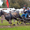 Morgan pony STANHOPE EXPRESS driven by Mary Mott-Kocsis of Baptistown, NJ.