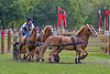 Boots Wright pony team