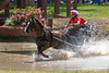 Shetland pony driven by Sherri Dolan of Milford, NJ
