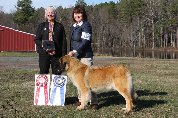 Leonberger Specialty- 3/13/10-3/14/10