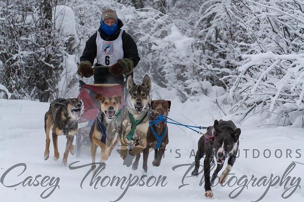 Mat Johnson 6-dog Class