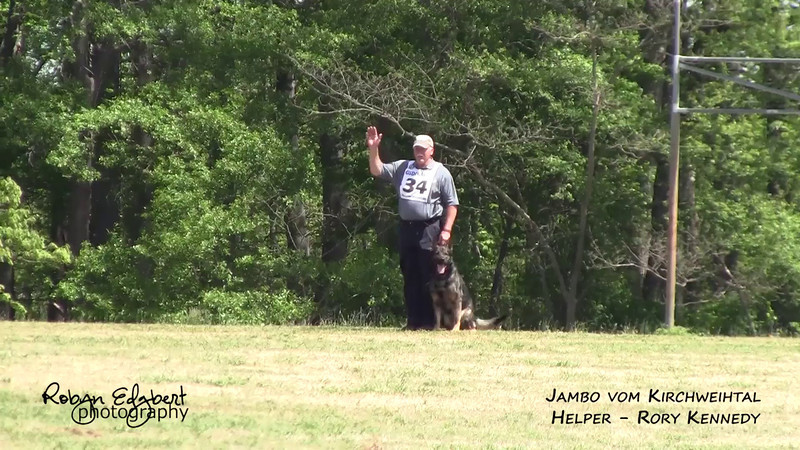 Carl Smith and Jambo vom Kirchweihtal - Protection 96 (2014 GSDCA-WDA National IPO & FH Championship)