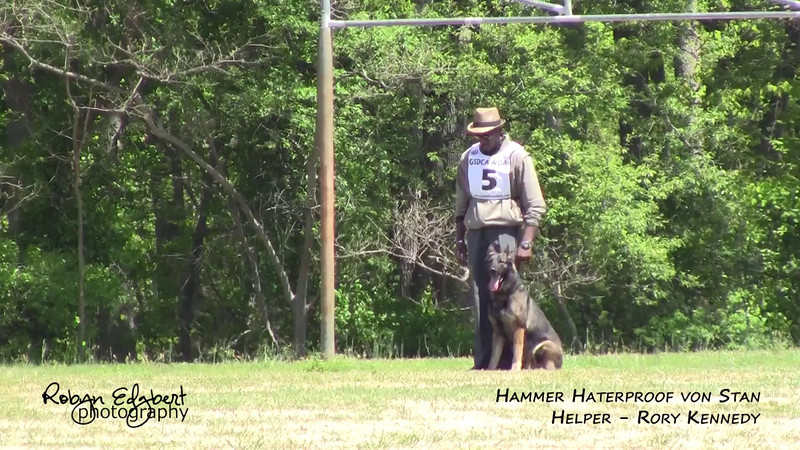 Jacob B. Pope, Jr. and Hammer Haterproof von Stan - Protection 70 (2014 GSDCA-WDA National IPO & FH Championship)