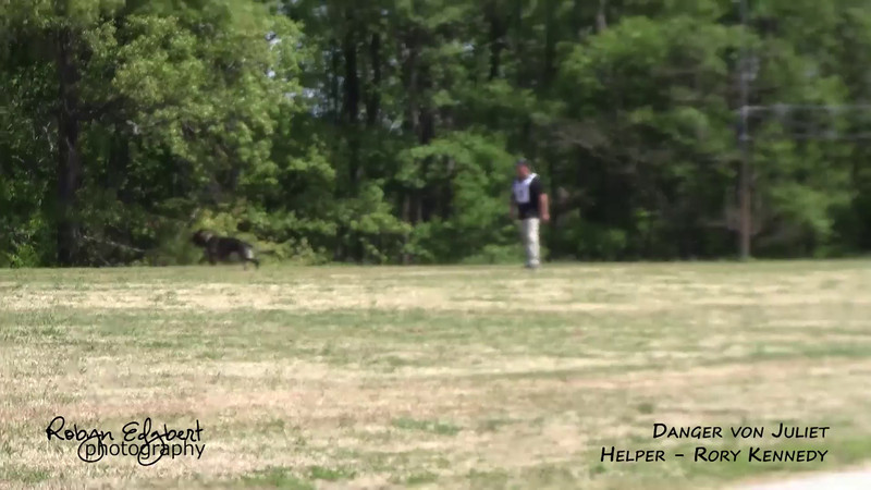 Chris Meverden and Danger von Juliet - Protection 77 (2014 GSDCA-WDA National IPO & FH Championship)
